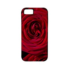 Roses Flowers Red Forest Bloom Apple iPhone 5 Classic Hardshell Case (PC+Silicone)