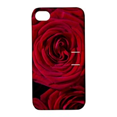 Roses Flowers Red Forest Bloom Apple iPhone 4/4S Hardshell Case with Stand