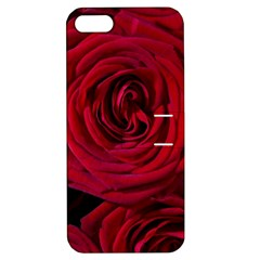 Roses Flowers Red Forest Bloom Apple iPhone 5 Hardshell Case with Stand