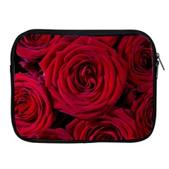 Roses Flowers Red Forest Bloom Apple iPad 2/3/4 Zipper Cases