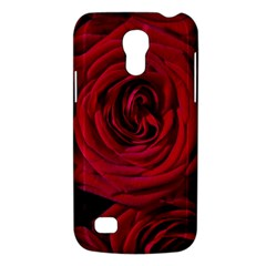 Roses Flowers Red Forest Bloom Galaxy S4 Mini