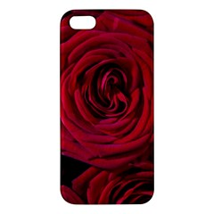 Roses Flowers Red Forest Bloom iPhone 5S/ SE Premium Hardshell Case