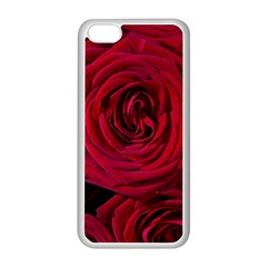 Roses Flowers Red Forest Bloom Apple iPhone 5C Seamless Case (White)