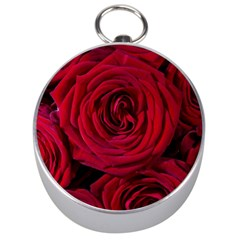 Roses Flowers Red Forest Bloom Silver Compasses