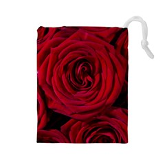 Roses Flowers Red Forest Bloom Drawstring Pouches (Large)