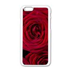 Roses Flowers Red Forest Bloom Apple iPhone 6/6S White Enamel Case