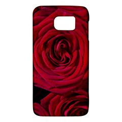 Roses Flowers Red Forest Bloom Galaxy S6