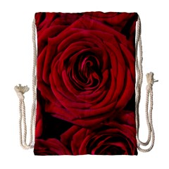 Roses Flowers Red Forest Bloom Drawstring Bag (large)