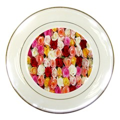 Rose Color Beautiful Flowers Porcelain Plates