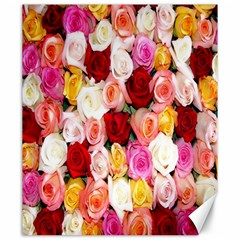 Rose Color Beautiful Flowers Canvas 20  X 24