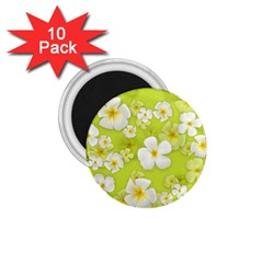 Frangipani Flower Floral White Green 1 75  Magnets (10 Pack)
