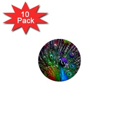 3d Peacock Pattern 1  Mini Buttons (10 Pack)