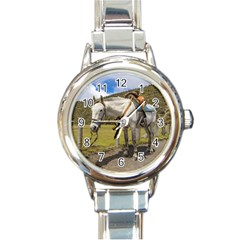 White Horse Tied Up At Cotopaxi National Park Ecuador Round Italian Charm Watch by dflcprints