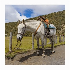White Horse Tied Up At Cotopaxi National Park Ecuador Medium Glasses Cloth by dflcprints