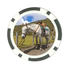 White Horse Tied Up At Cotopaxi National Park Ecuador Poker Chip Card Guard by dflcprints
