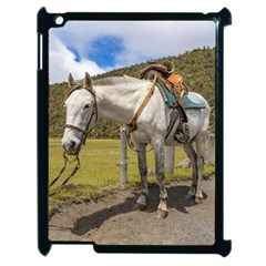 White Horse Tied Up At Cotopaxi National Park Ecuador Apple Ipad 2 Case (black) by dflcprints