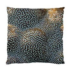Coral Pattern Standard Cushion Case (two Sides) by Amaryn4rt