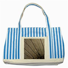 Sea Fan Coral Intricate Patterns Striped Blue Tote Bag by Amaryn4rt