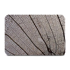 Sea Fan Coral Intricate Patterns Plate Mats by Amaryn4rt