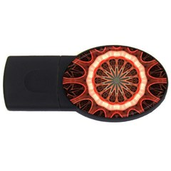 Circle Pattern Usb Flash Drive Oval (2 Gb) by Amaryn4rt