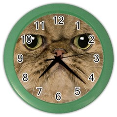 Cute Persian Cat Face In Closeup Color Wall Clocks by Amaryn4rt