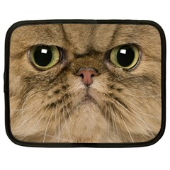 Cute Persian Cat Face In Closeup Netbook Case (large) by Amaryn4rt