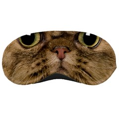 Cute Persian Cat Face In Closeup Sleeping Masks by Amaryn4rt