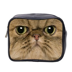 Cute Persian Cat Face In Closeup Mini Toiletries Bag 2 Side by Amaryn4rt