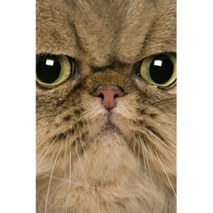 Cute Persian Cat Face In Closeup 5 5  X 8 5  Notebooks by Amaryn4rt