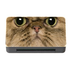Cute Persian Cat Face In Closeup Memory Card Reader With Cf by Amaryn4rt