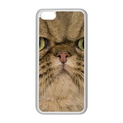 Cute Persian Cat Face In Closeup Apple Iphone 5c Seamless Case (white) by Amaryn4rt