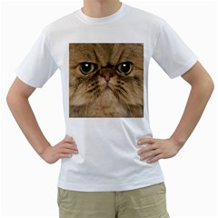 Cute Persian Cat Face In Closeup Men s T Shirt (white)  by Amaryn4rt