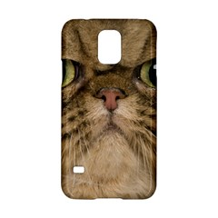 Cute Persian Cat Face In Closeup Samsung Galaxy S5 Hardshell Case
