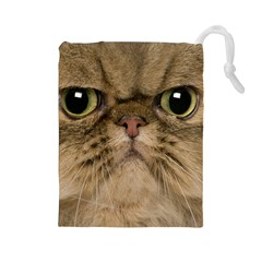 Cute Persian Cat Face In Closeup Drawstring Pouches (large)  by Amaryn4rt