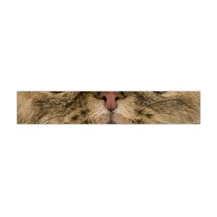 Cute Persian Cat Face In Closeup Flano Scarf (mini) by Amaryn4rt