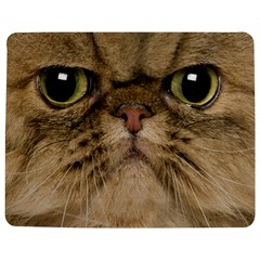 Cute Persian Cat Face In Closeup Jigsaw Puzzle Photo Stand (rectangular) by Amaryn4rt
