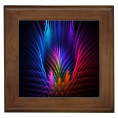 Bird Feathers Rainbow Color Pink Purple Blue Orange Gold Framed Tiles