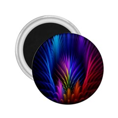 Bird Feathers Rainbow Color Pink Purple Blue Orange Gold 2 25  Magnets