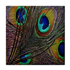 Peacock Feathers Tile Coasters