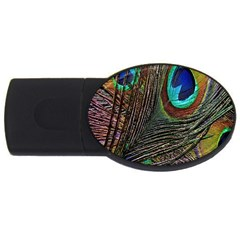 Peacock Feathers Usb Flash Drive Oval (2 Gb)