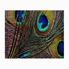 Peacock Feathers Small Glasses Cloth