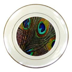 Peacock Feathers Porcelain Plates