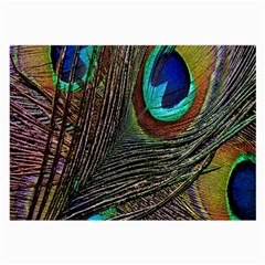 Peacock Feathers Large Glasses Cloth (2 Side)