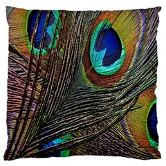 Peacock Feathers Large Cushion Case (two Sides)
