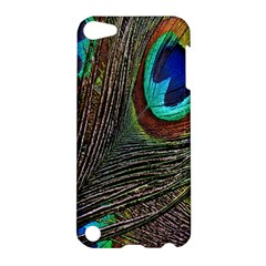 Peacock Feathers Apple Ipod Touch 5 Hardshell Case by Simbadda