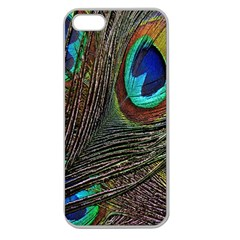 Peacock Feathers Apple Seamless Iphone 5 Case (clear)