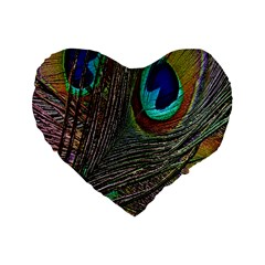 Peacock Feathers Standard 16  Premium Flano Heart Shape Cushions