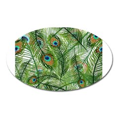 Peacock Feathers Pattern Oval Magnet