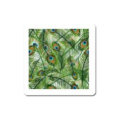 Peacock Feathers Pattern Square Magnet