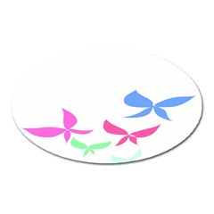 Colorful Butterfly Blue Red Pink Brown Fly Leaf Animals Oval Magnet